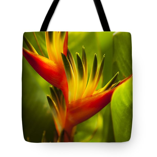 Heliconia Tote Bag by Dana Edmunds - Printscapes