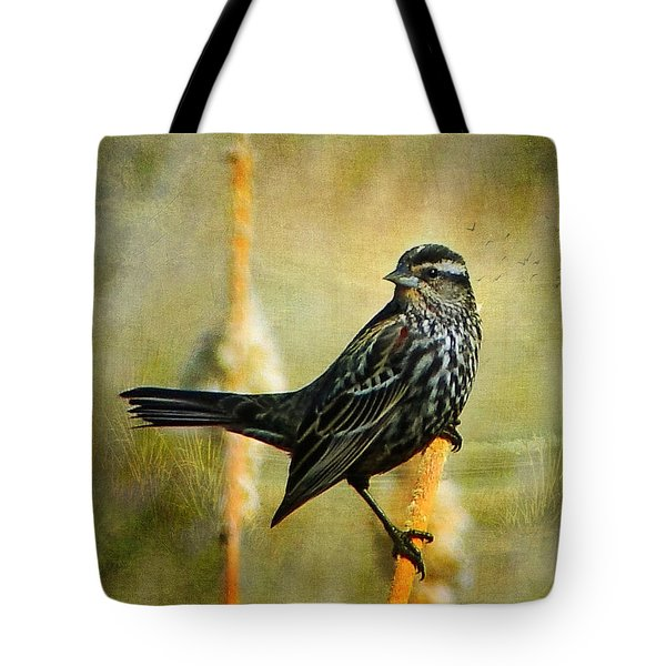 In The Limelight Tote Bag by Blair Wainman
