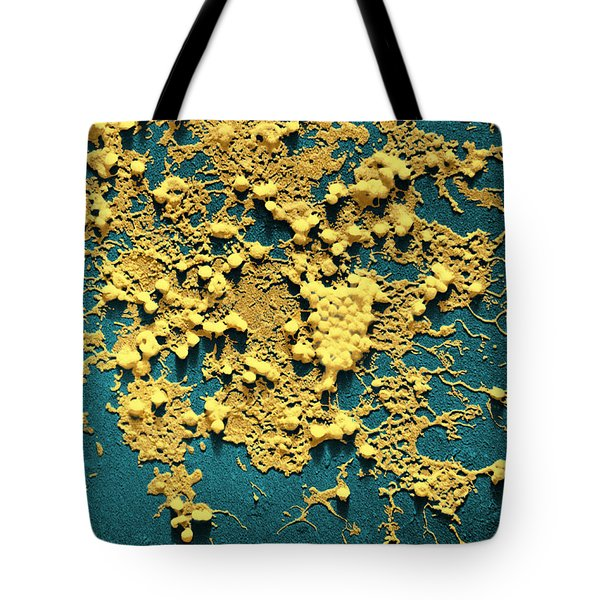 Influenza B Tote Bag by Omikron