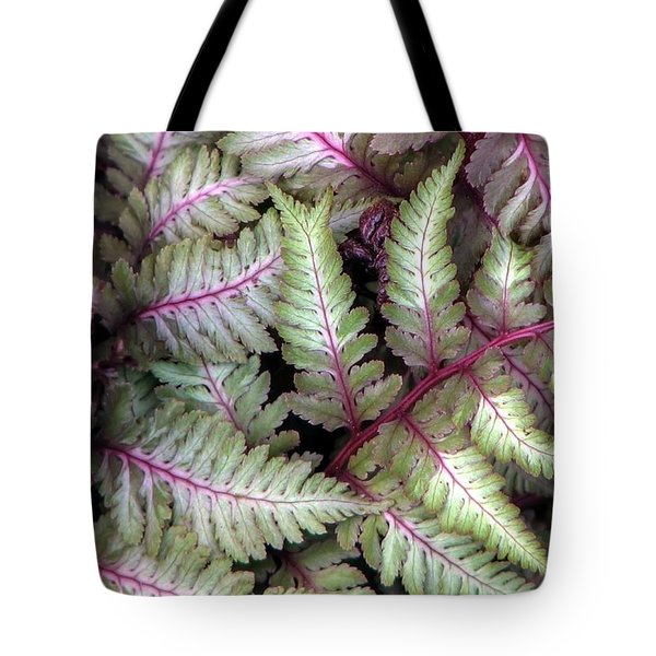Japanese Painted Fern Tote Bag by Chris Anderson