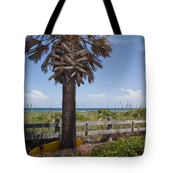 Juan Ponce De Leon Landing Site In Florida Tote Bag by Allan  Hughes