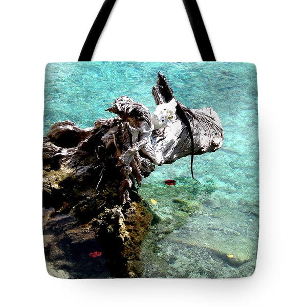 Tote Bag featuring the photograph King Of The Blue Lagoon by Danielle  Parent