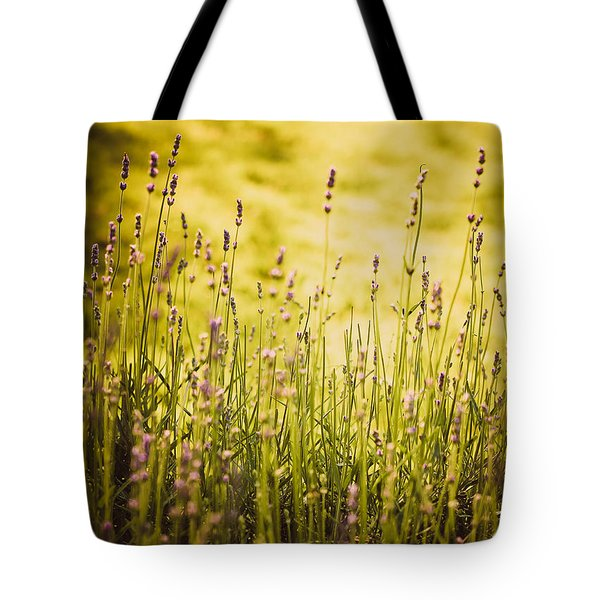 Tote Bag featuring the photograph Lavender Gold by Sara Frank