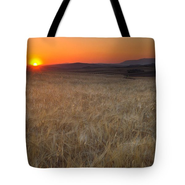 Light Fields Tote Bag by Guido Montanes Castillo