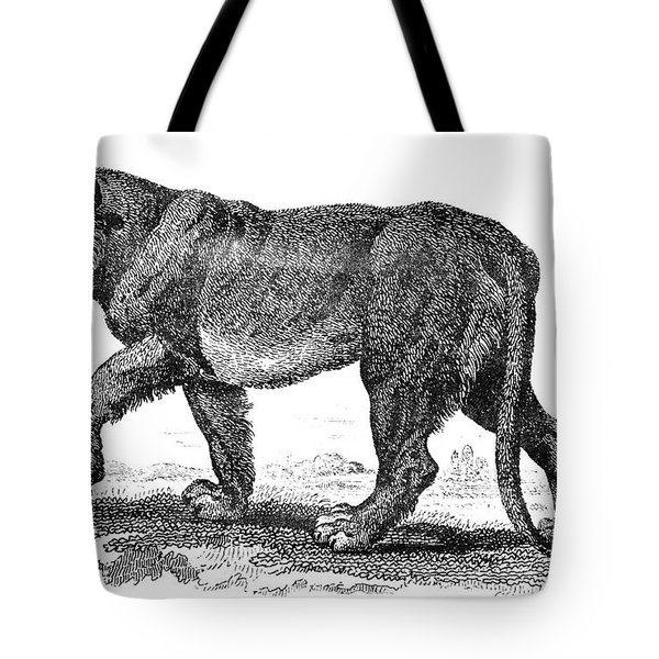 Lion Tote Bag by Granger