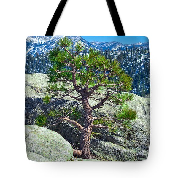 Living Above The Circumstances Tote Bag