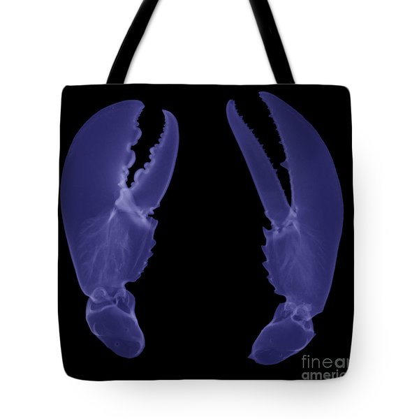 Lobster Claws X-ray Tote Bag by Ted Kinsman