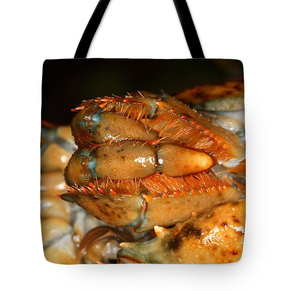 Lobster Mouth Tote Bag by Ted Kinsman