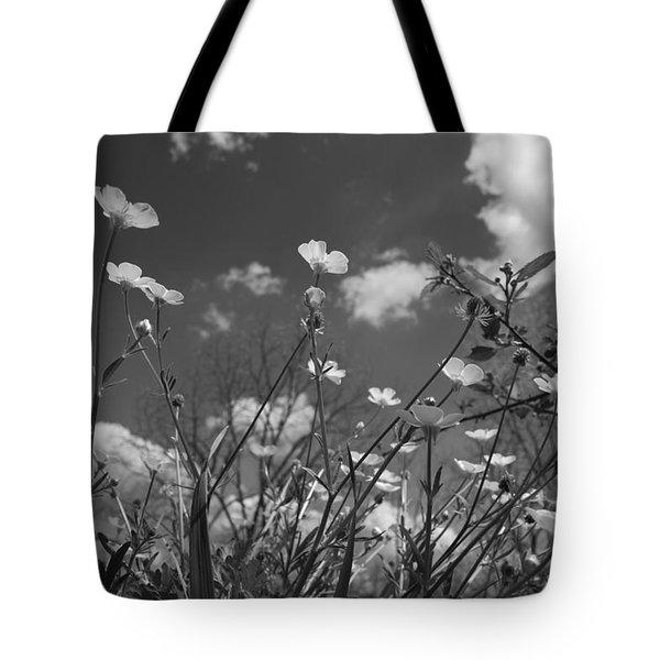 Looking Up  Tote Bag by Betsy Knapp