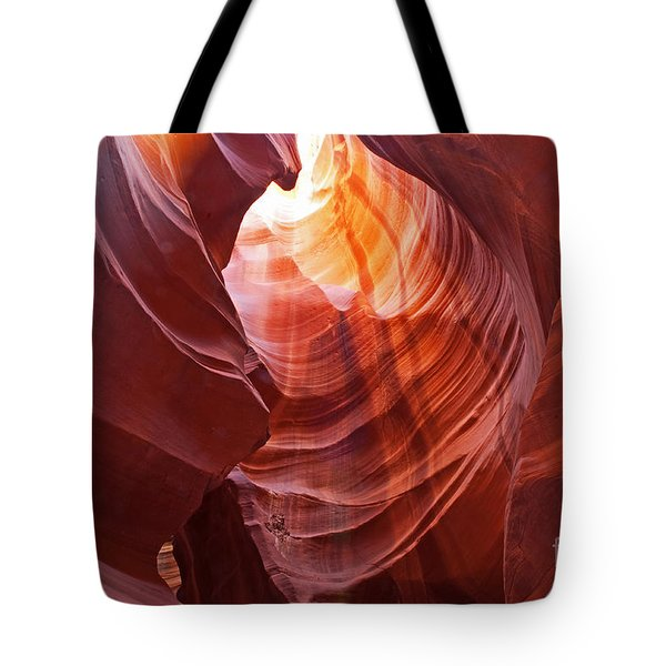 Tote Bag featuring the photograph Looking Up by Bob and Nancy Kendrick
