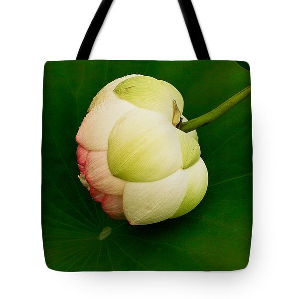 Lotus Tote Bag by Jean Noren