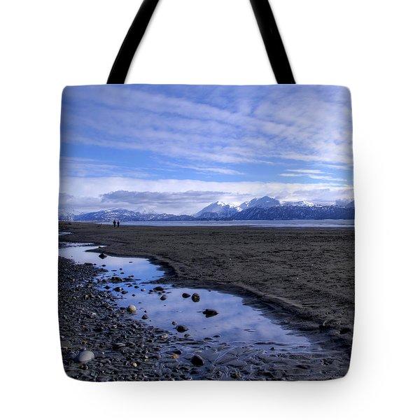 Low Tide Tote Bag by Michele Cornelius