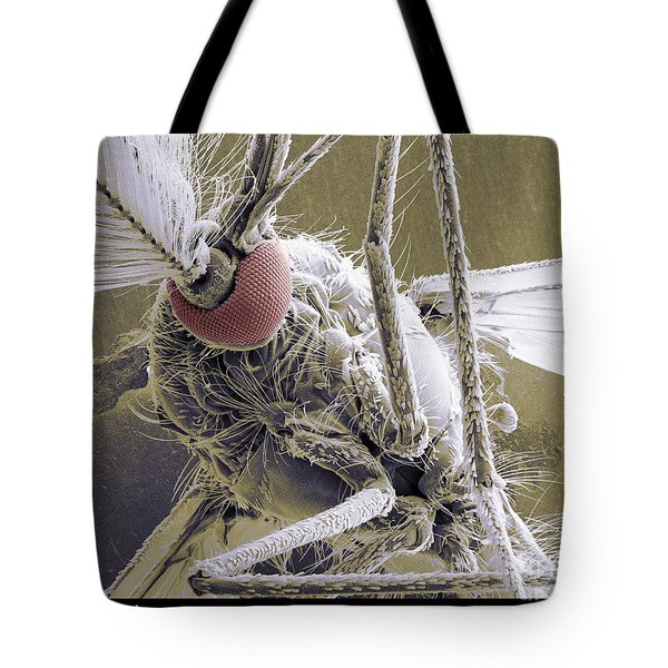 Male Mosquito Tote Bag by Ted Kinsman