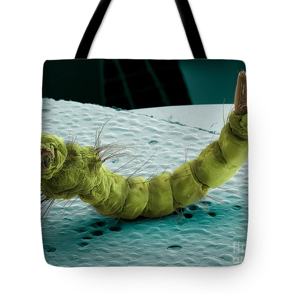 Mosquito Larva, Sem Tote Bag by Ted Kinsman