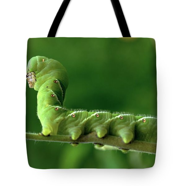 Munch A Bunch Tote Bag