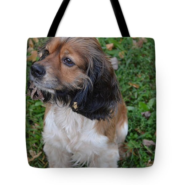 My Little Bear Tote Bag by Debbie Portwood