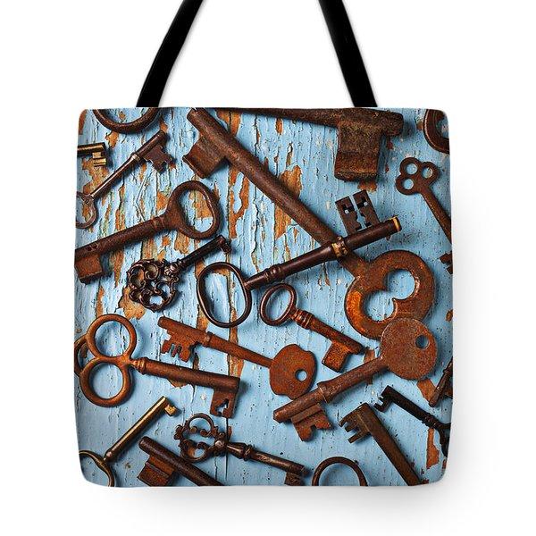 Old Skeleton Keys Tote Bag by Garry Gay