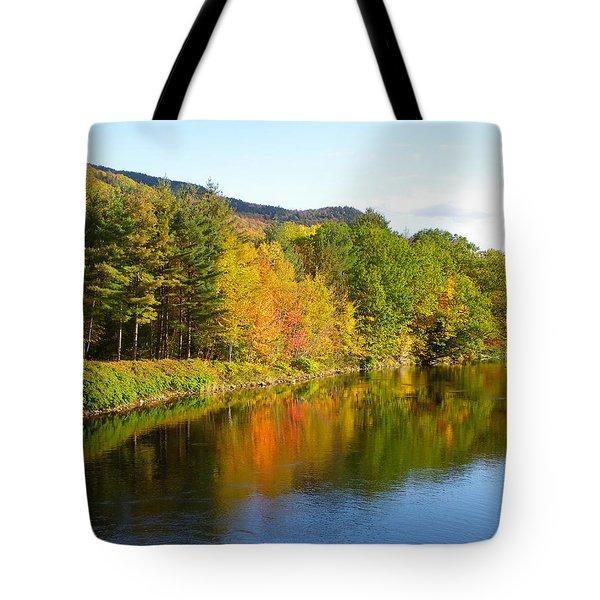 Painted Brook Tote Bag