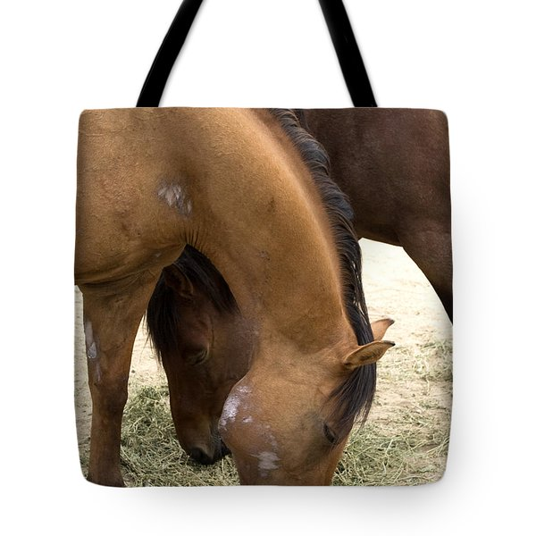 Tote Bag featuring the photograph Parallel Ponies by Lorraine Devon Wilke
