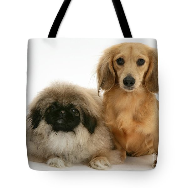 Pekingese And Dachshund Puppies Tote Bag by Jane Burton