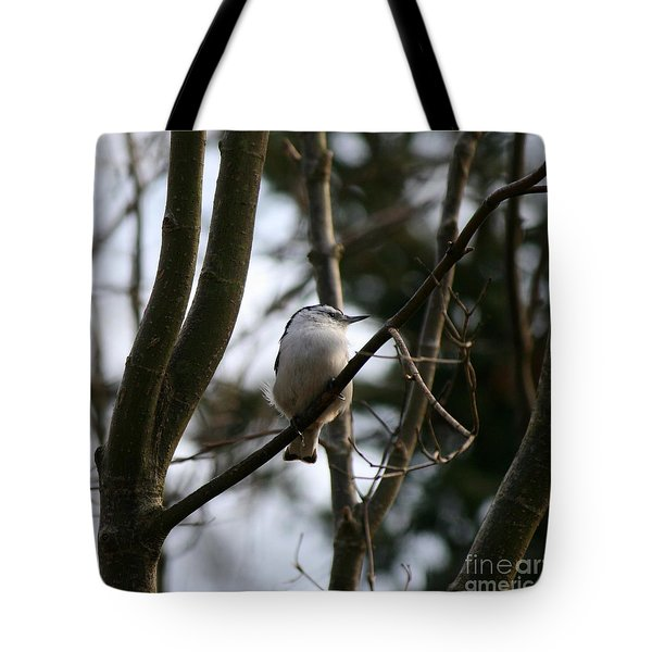Perched And Content  Tote Bag by Neal Eslinger
