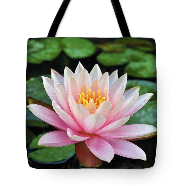 Pink Lotus Tote Bag by Sumit Mehndiratta