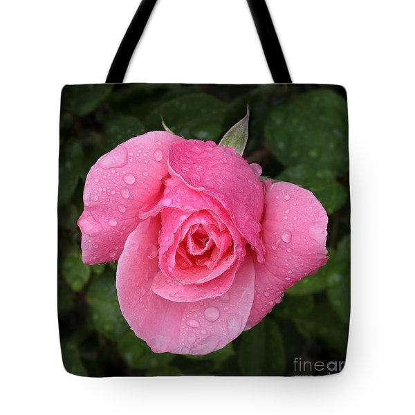 Pink Rose Macro Shot With Rain Drops Tote Bag