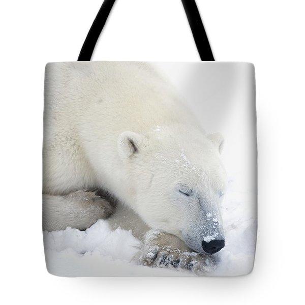 Polar Bear Ursus Maritimus Has His Eyes Tote Bag by Richard Wear