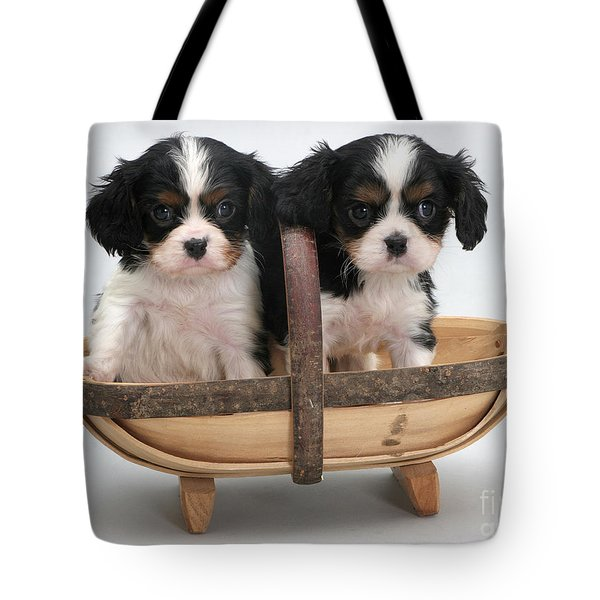 Puppies In A Trug Tote Bag by Jane Burton
