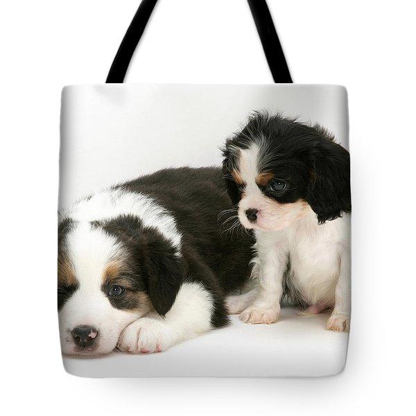 Puppies Tote Bag by Jane Burton