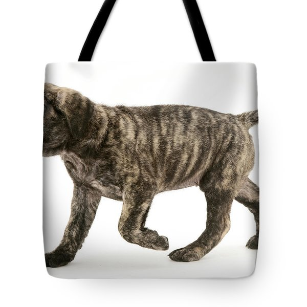 Puppy Trotting Tote Bag by Jane Burton