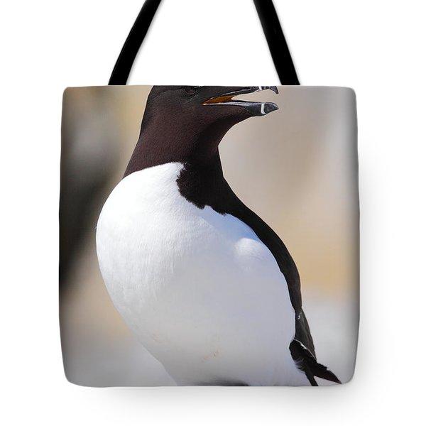 Razorbill Tote Bag by Bruce J Robinson