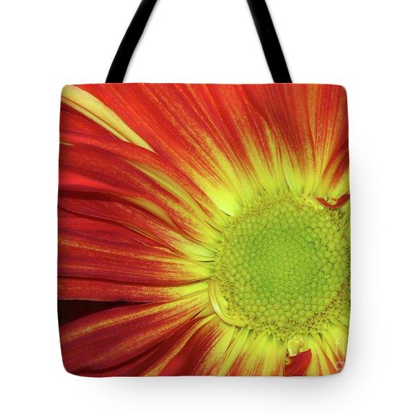 Red Daisy Tote Bag by Sabrina L Ryan