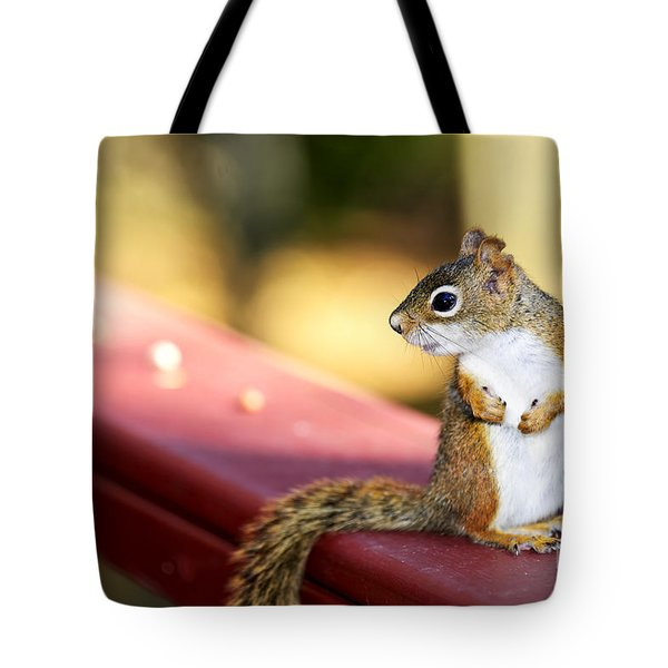 Red Squirrel On Railing Tote Bag by Elena Elisseeva