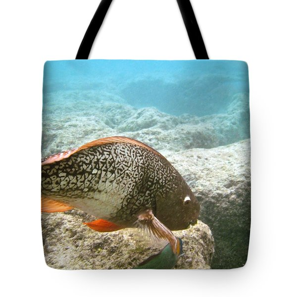 Redlip Parrotfish Tote Bag by Michael Peychich