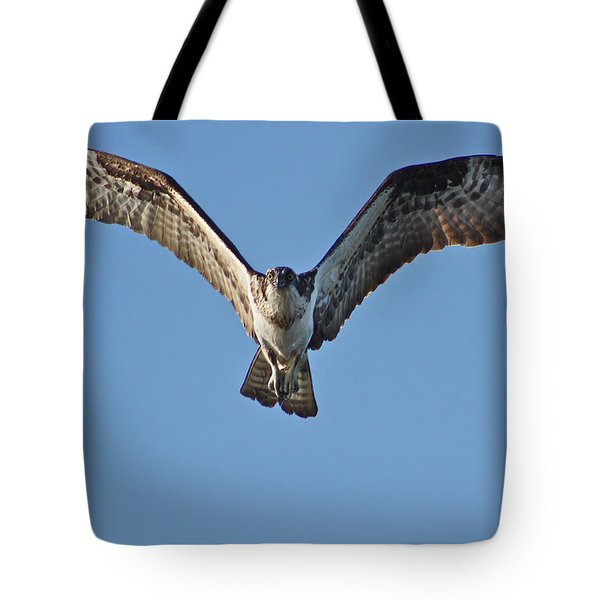 Tote Bag featuring the photograph Remember To Soar by Cathie Douglas