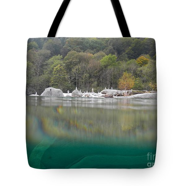 River With Trees Tote Bag by Mats Silvan