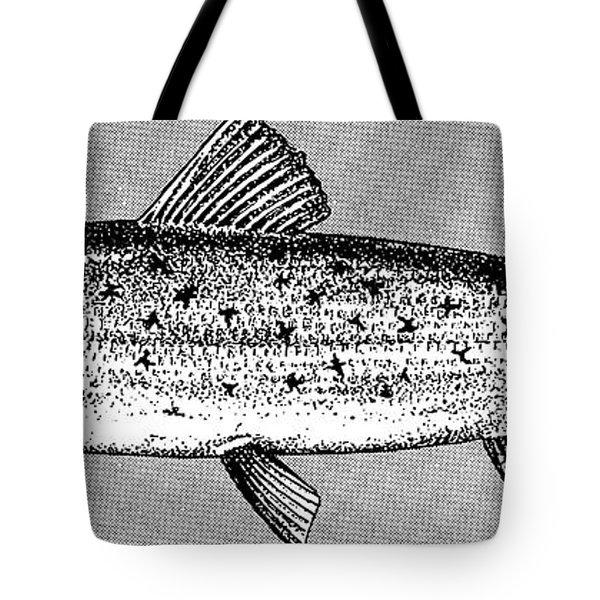 Salmon Tote Bag by Granger