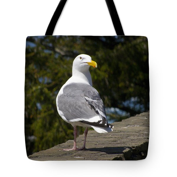 Tote Bag featuring the photograph Seagull by David Gleeson