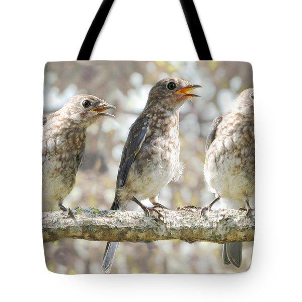 Sing Sing Sing Tote Bag by Amy Tyler