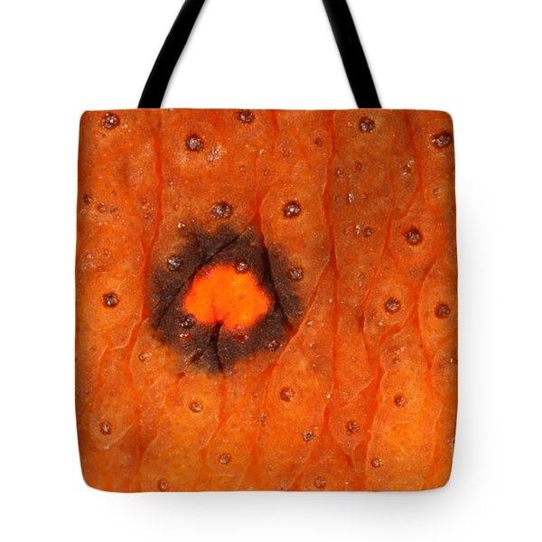 Skin Of Eastern Newt Tote Bag by Ted Kinsman