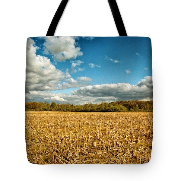 Skyway Tote Bag by Rachel Cohen
