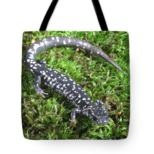 Slimy Salamander Tote Bag by Ted Kinsman