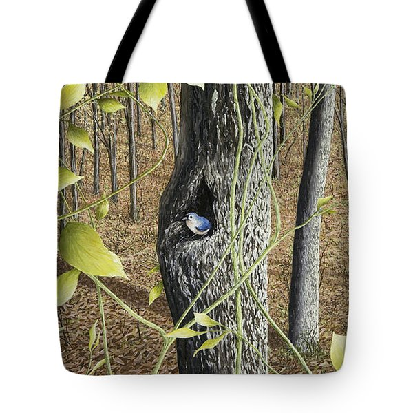 Springtime At Collins Creek Tote Bag by Mary Ann King