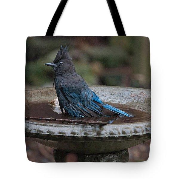 Tote Bag featuring the digital art Stellar Jay In The Birdbath by Carol Ailles