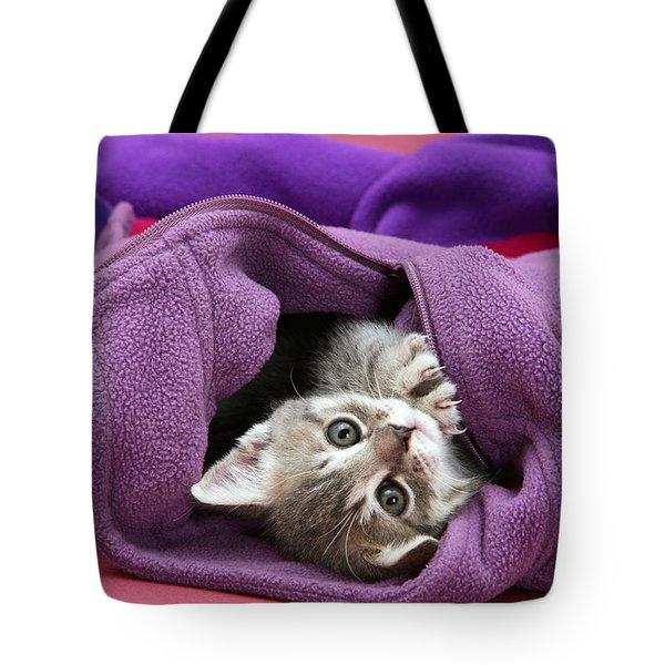Tabby Kitten Tote Bag by Jane Burton