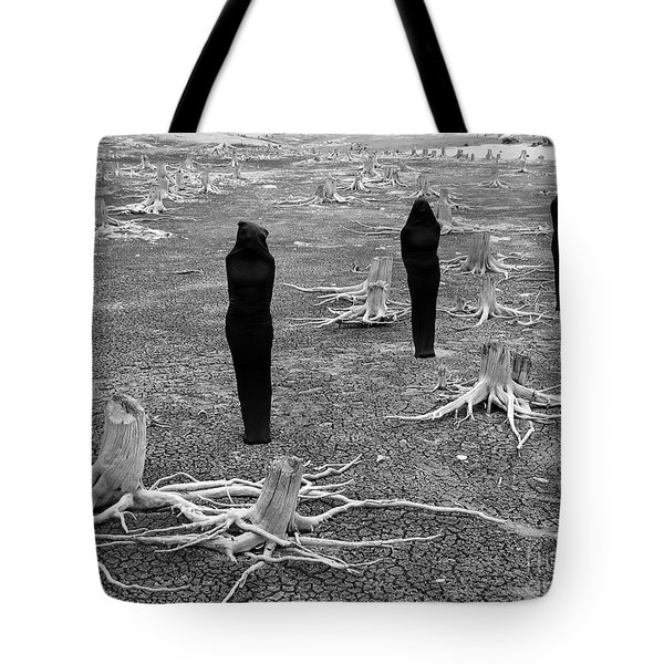 The Visitors Tote Bag by Bob Christopher