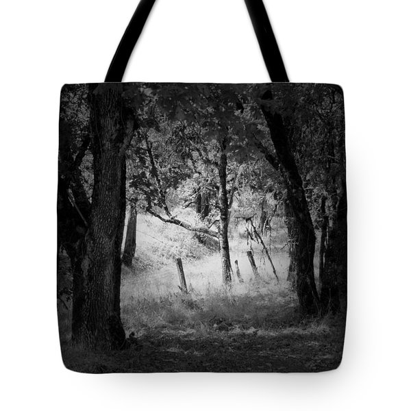 Through The Trees  Tote Bag by Kathleen Grace