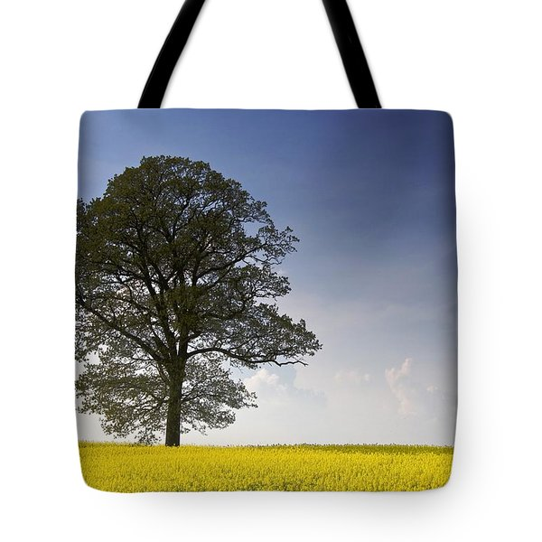 Tree In A Rapeseed Field, Yorkshire Tote Bag by John Short
