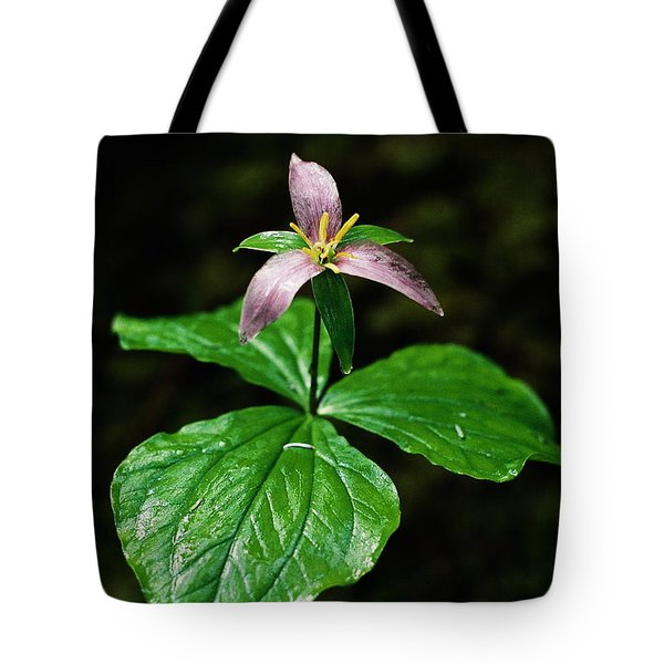 Tote Bag featuring the photograph Wet Trillium by Cathie Douglas